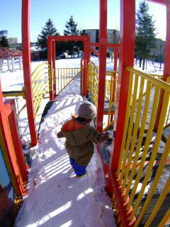 1月28日 冬の公園